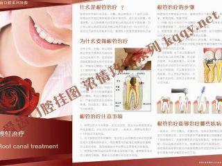 爱齿口腔挂图玫红系列——根管治疗