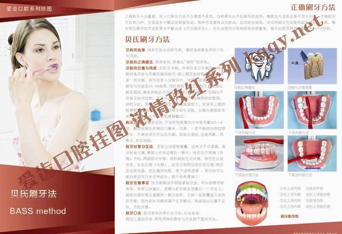 爱齿玫红系列口腔挂图——贝氏刷牙方法