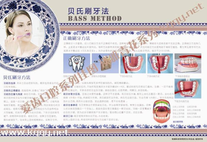 爱齿淡雅青花系列口腔挂图——贝氏刷牙方法