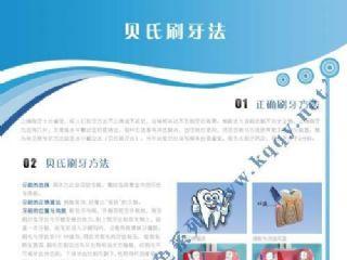 爱齿竖版蓝色口腔挂图——贝氏刷牙方法