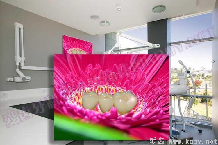 粉花烤瓷 爱齿创意牙科装饰挂图宣传画 沙发背景墙 候诊区精美图片